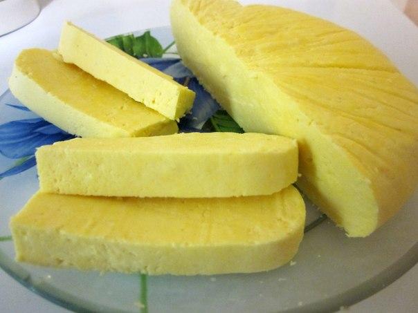 Как сделать сыр отзывы 684